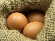 Ciérrese encima del huevo en saco Fotos de archivo