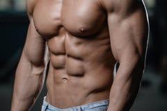 Ciérrese encima del individuo fuerte del ABS que muestra en los músculos del gimnasio fotografía de archivo