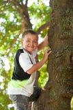Muchacho lindo que sube un árbol. Fotografía de archivo