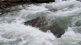 Ciérrese encima del tiro del agua El agua de los flujos de corriente con las rocas en el movimiento rápido metrajes