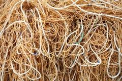 Ciérrese encima del tiro de la cuerda Imagen de archivo libre de regalías