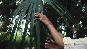 Ciérrese encima del tiro de las manos del ` s de la mujer que toca hojas de palma con los tatuajes en sus manos almacen de video