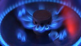Ciérrese encima del tiro macro de las llamas azules de la hornilla de una estufa de gas Gas de petróleo líquido almacen de video