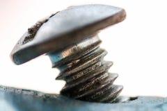 Ciérrese encima del tornillo atornillado en el tubo plástico fotografía de archivo