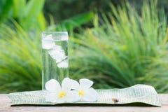 Ciérrese encima del vidrio de agua fría con hielo en la tabla con el jardín de la falta de definición Fotografía de archivo libre de regalías