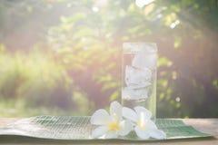 Ciérrese encima del vidrio de agua fría con hielo en la tabla con el jardín de la falta de definición Imagen de archivo