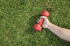 Ciérrese encima a mano de llevar a cabo la pesa de gimnasia roja en hierba, visión desde arriba Imagenes de archivo