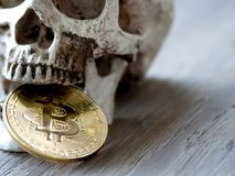 Ciérrese para arriba de bitcoin de oro penetrante del cráneo en la tabla de madera El concepto de inversión y fluctuación del bit fotografía de archivo
