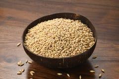 Ciérrese para arriba de cebada en un coco Shell Bowl en fondo de madera imagen de archivo