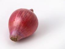 Ciérrese para arriba de cebollas rojas Imagen de archivo libre de regalías