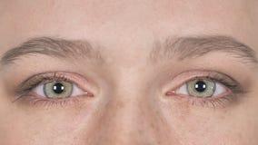 Ciérrese para arriba de centellar ojos hermosos de la mujer joven casual almacen de metraje de vídeo