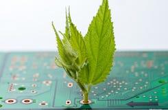 Ciérrese para arriba de circuitos electrónicos en tecnología en el tablero de lógica del fondo del ordenador de Mainboard, placa  Fotos de archivo libres de regalías