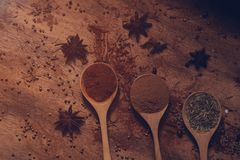 Ciérrese para arriba de diversas especias e hierbas coloridas calientes en cucharas de madera imagen de archivo