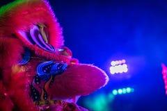 Ciérrese para arriba de dragón chino Fotos de archivo