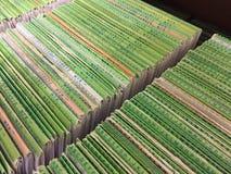 Ciérrese para arriba de ficheros médicos en orden alfabético en cabinete de archivo fotografía de archivo