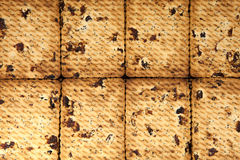 Ciérrese para arriba de fondo delicioso de las galletas de pasa Fotografía de archivo