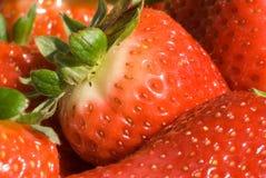 Ciérrese para arriba de fresas Foto de archivo