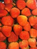 Ciérrese para arriba de fresas rojas Foto de archivo libre de regalías