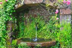 Ciérrese para arriba de fuente de agua en las montañas Fotografía de archivo