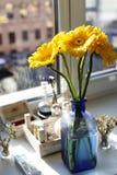 Ciérrese para arriba de gerberas amarillos en pequeño florero azul Imagen de archivo libre de regalías