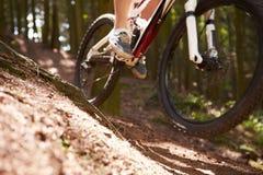 Ciérrese para arriba de la bici de montaña del montar a caballo del hombre a través del bosque Foto de archivo