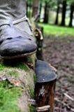 Ciérrese para arriba de la bota de vaquero occidental del país en un tronco de un árbol en una madera verde - estilo retro del vi imágenes de archivo libres de regalías