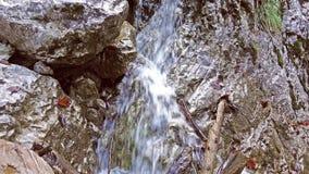 Ciérrese para arriba de la cascada, agua que cae sobre las piedras en la cámara lenta, corrientes que caen sobre rocas, salpica,  almacen de video