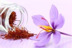 Ciérrese para arriba de la flor del azafrán Fotografía de archivo