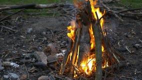 Ciérrese para arriba de la leña ardiente en un fuego camping Vida rural Fuego en la chimenea almacen de metraje de vídeo