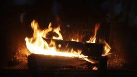 Ciérrese para arriba de la leña que quema en chimenea almacen de metraje de vídeo