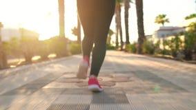 Ciérrese para arriba de la mujer que ata cordones y el funcionamiento de zapato a lo largo de la avenida de la palma en la puesta almacen de video