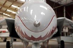 Ciérrese para arriba de la nariz delantera de una F 14 Tomcat fotos de archivo