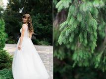 Ciérrese para arriba de la novia morena hermosa soñadora que camina solamente en el parque que disfruta de la onda y de la danza  Foto de archivo