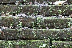Ciérrese para arriba de la pared de ladrillo vieja, fondo de la textura Imagenes de archivo
