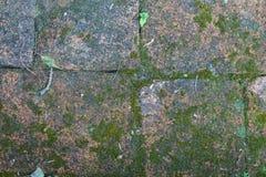 Ciérrese para arriba de la pared de ladrillo vieja, fondo de la textura Imagen de archivo libre de regalías
