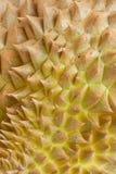 Ciérrese para arriba de la piel del durian Imagen de archivo libre de regalías