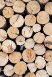 Ciérrese para arriba de la pila derramada cortando backgro texturizado los registros de madera secos fotos de archivo