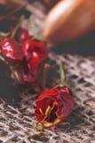 Ciérrese para arriba de la pimienta seca Fotografía de archivo libre de regalías