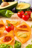 Ciérrese para arriba de la pimienta y del aguacate del tomate de los microprocesadores de los nachos Imagen de archivo