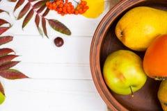 Ciérrese para arriba de la placa de la arcilla con las hojas de otoño dispersadas cercanas de la cosecha Foto de archivo libre de regalías