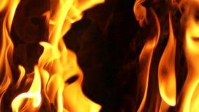 Ciérrese para arriba de la quemadura del fuego almacen de video