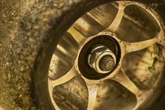 Ciérrese para arriba de la rueda del monopatín Fotos de archivo