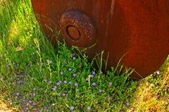 Ciérrese para arriba de la rueda oxidada vieja con los pequeños wildflowers de la primavera Imágenes de archivo libres de regalías