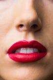 Ciérrese para arriba de labios con maquillaje en ellos Fotos de archivo libres de regalías