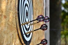 Ciérrese para arriba de las flechas de los dardos que son pegadas en el tablero de la blanco Fotografía de archivo libre de regalías