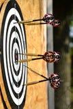 Ciérrese para arriba de las flechas de los dardos que son pegadas en el tablero de la blanco Imagen de archivo libre de regalías