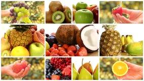 Ciérrese para arriba de las frutas diversas, montaje almacen de metraje de vídeo