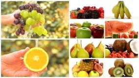 Ciérrese para arriba de las frutas diversas, montaje metrajes