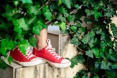 Ciérrese para arriba de las piernas de la muchacha en los keds que se colocan en las escaleras Imagen de archivo