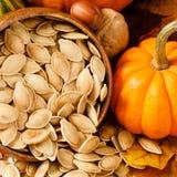 Ciérrese para arriba de las semillas de calabaza tostadas, saladas Imágenes de archivo libres de regalías